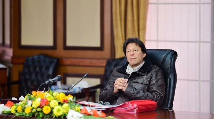 Most Pakistanis think favourably of PM Imran's performance: survey
