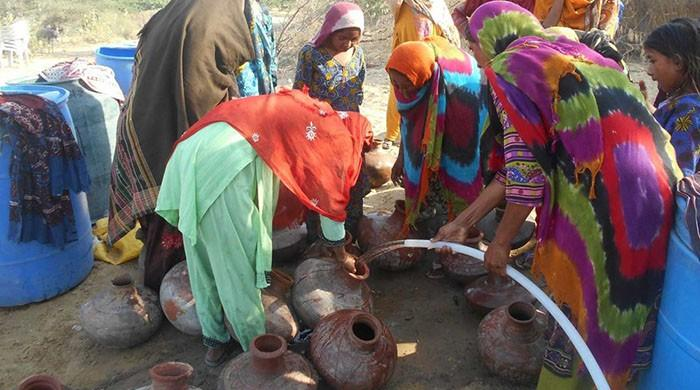World Bank stresses on improving water use efficiency in Pakistan