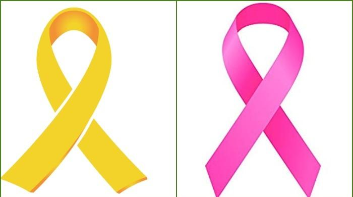 PSL to observe Childhood Cancer and Breast Cancer Awareness Days