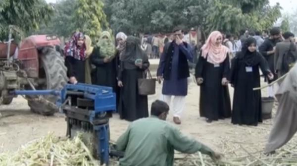 Faisalabad students replicate village life and rural culture