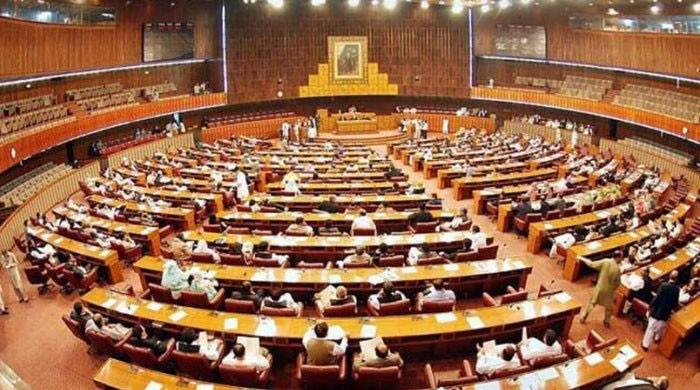 NA resolution rejects Indian allegations linking Pakistan to Pulwama attack