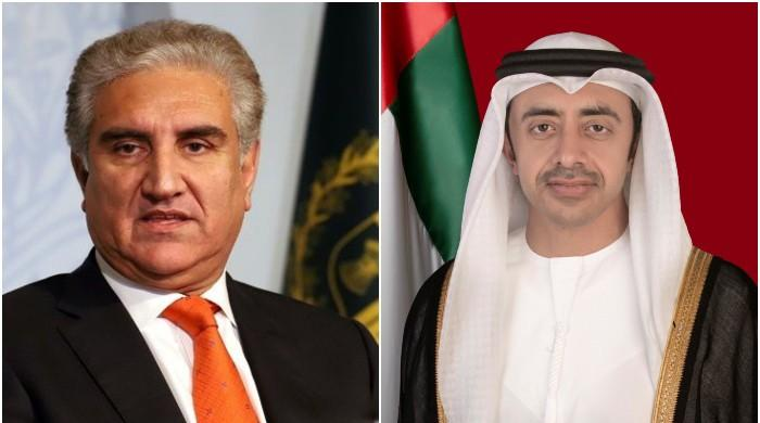 FM Qureshi, UAE counterpart discuss situation arising after Pulwama attack