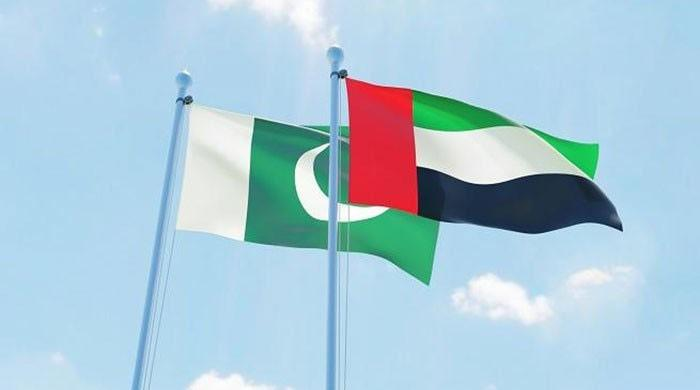 Pakistan receives $1billion from UAE