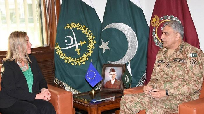 EU Representative Federica Mogherini lauds Pakistan's efforts for peace, stability