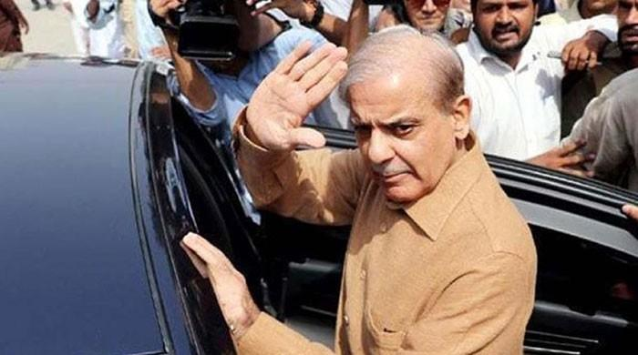 LHC orders removal of Shehbaz Sharif's name from ECL