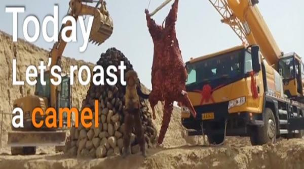 Fancy a roasted camel? It's not that easy to cook