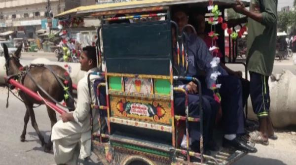 Qingqi donkey cart: A new way to travel around Lahore