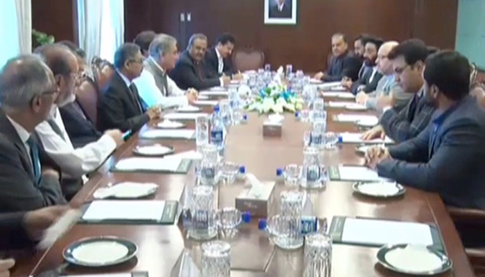 Pakistan making efforts for peace in Afghanistan: FM Qureshi