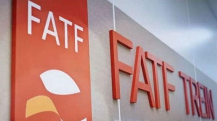 Pakistani delegation leaves for China to attend FATF session