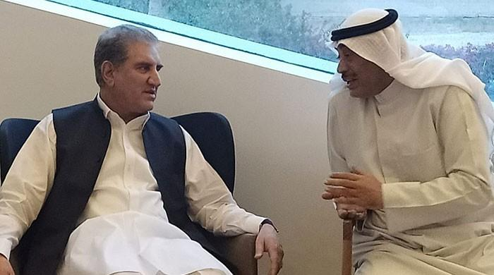 Government has initiated economic diplomacy: FM Qureshi