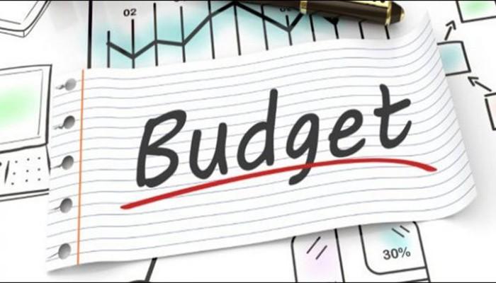 Federal Budget 2019-20: 10 percent cut in Cabinet members' salaries