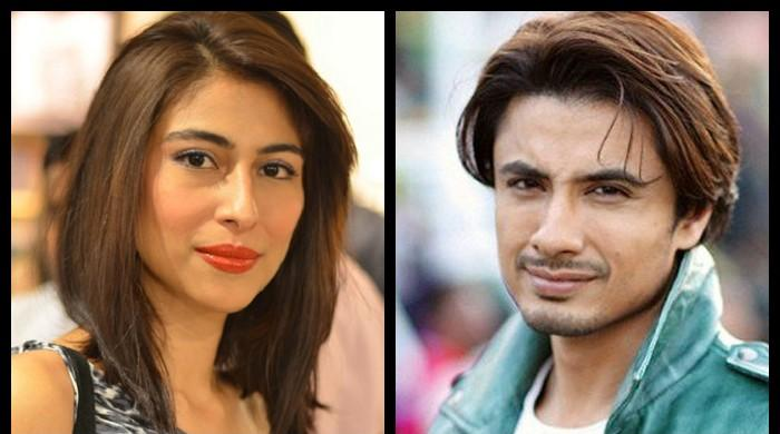 Ali Zafar witness says Meesha Shafi's allegations tarnished alleged harasser's image