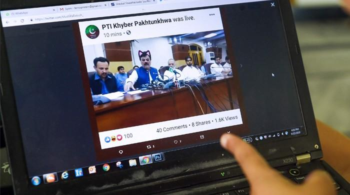 The cat's out of the bag! PTI minister's livestream on Caturday went out with cat filter
