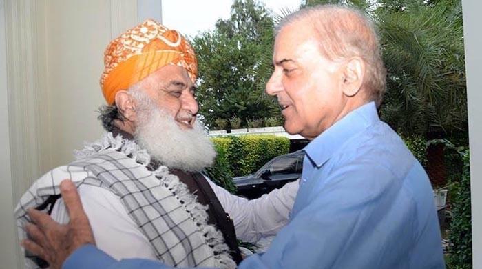 Shehbaz, Fazl meet today to discuss APC, political situation