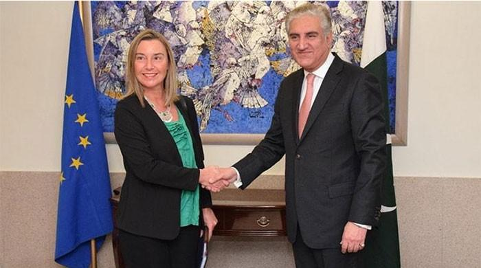 FM Qureshi to meet NATO and EU leaders in Brussels