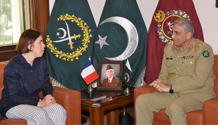 France's Secretary-General for Defence calls on Pakistan
