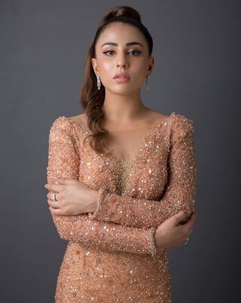 Image result for ushna shah on the Red Carpet of Lux Style Awards 2019