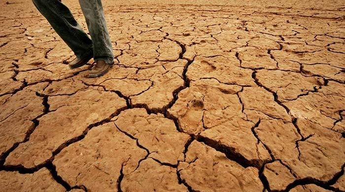 As water disappears, parched southern Pakistan farmers march north