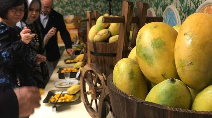 'King of fruits' delights Dubai residents at 'Pakistan Mango Festival'