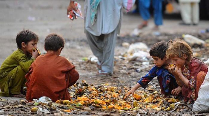 Pakistan presents progress report on anti-poverty development plans to UN