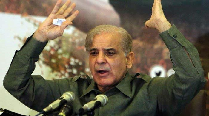 Stealing from earthquake victims is like 'feeding on corpses', says Shehbaz Sharif