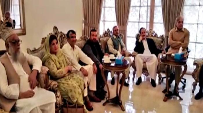 Shehbaz Sharif vows strict action against senators who 'sold their conscience'