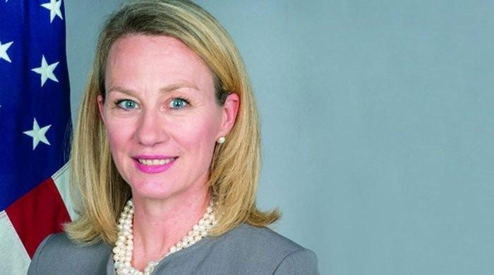 US envoy Alice Wells arrives in Pakistan