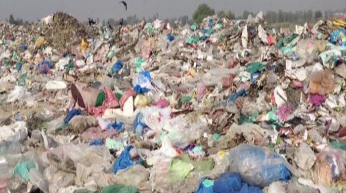 Sindh govt bans selling and use of plastic bags from October 1