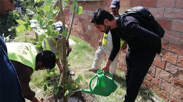 Climate Change: The young Pakistani activist striving to save the environment