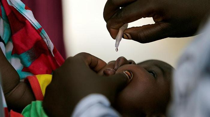 Nigeria hails 'historic milestone' after 3 years polio-free