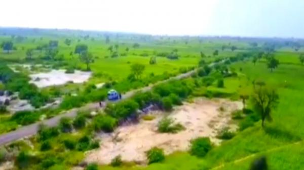 The other side of torrential rains: Thar now greener than before