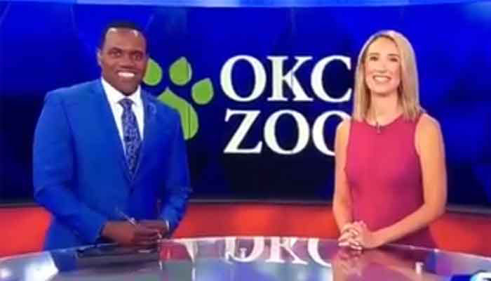 TV anchor apologises after comparing black co-host to a gorilla