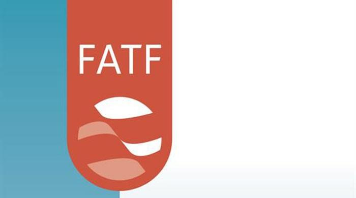 FATF to decide Pakistan's fate in its Paris meeting next month