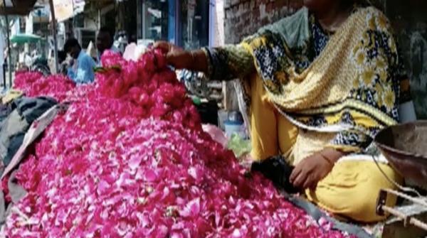 Lahore flower show