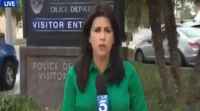 Reporter goes viral for saying she contacted dead man 'for comment' live on air