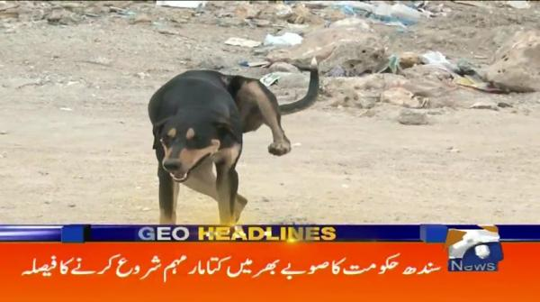 Geo Headlines 02 PM | 20th September 2019