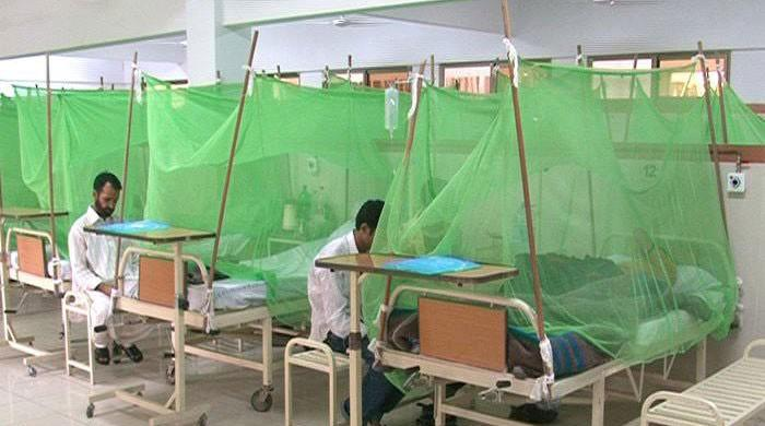 Pakistan's centre, provinces team up to contain dengue epidemic as 10,000 test positive