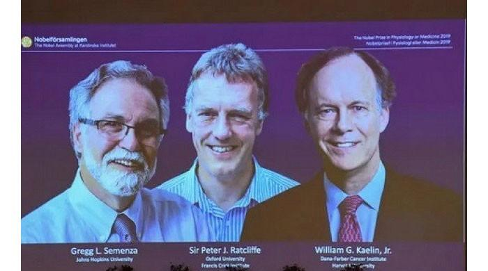 Three researchers from US, Britain share Nobel Medicine Prize