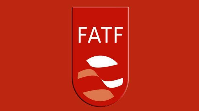 Pakistani delegation reaches Paris for two-day FATF meeting