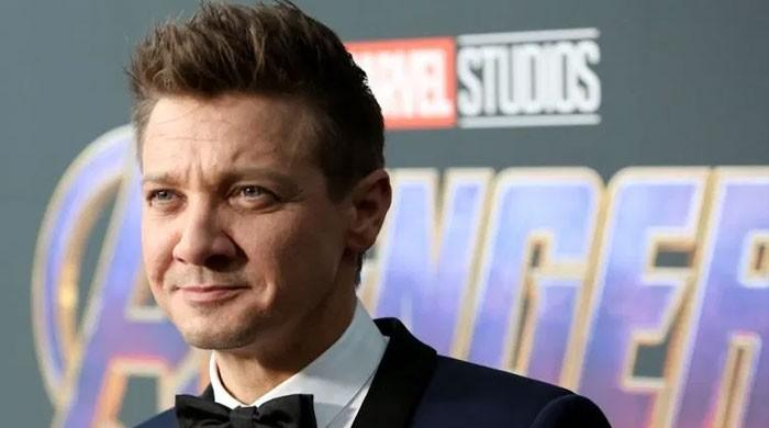 Jeremy Renner's allegations levelled by ex-wife to gain custody of daughter: source