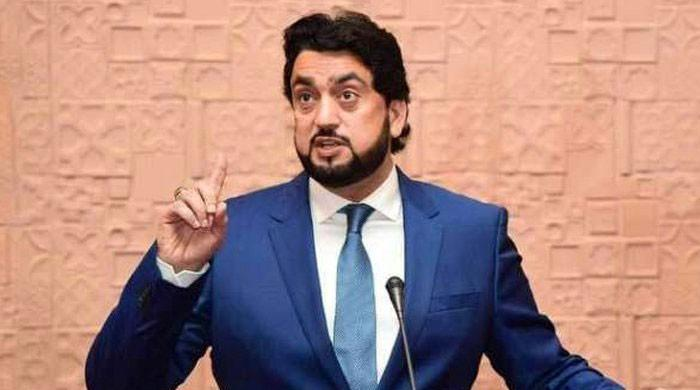 PM Imran shown video of drugs' recovery from Rana Sanaullah: Shehryar Afridi
