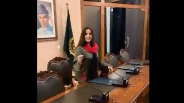 Who allowed TikTok star Hareem Shah into Foreign Ministry?