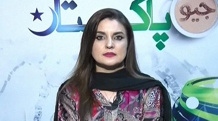 Lahore lecturer's case was mishandled, decision delayed: Kashmala Tariq