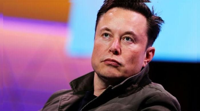 Tesla's Musk, Greenlight's Einhorn taunt each other on Twitter