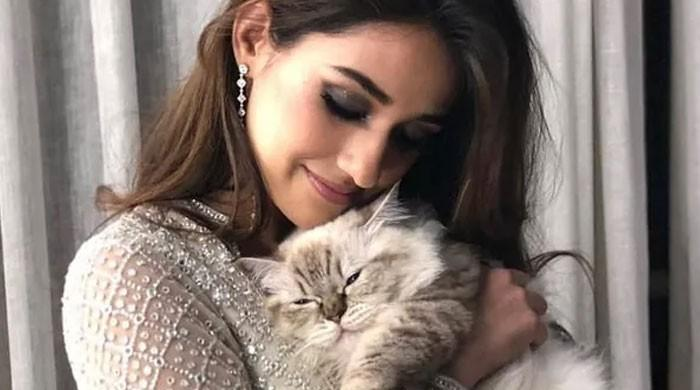 Disha Patani's adorable photos with her cat have 'relateable' written all over it