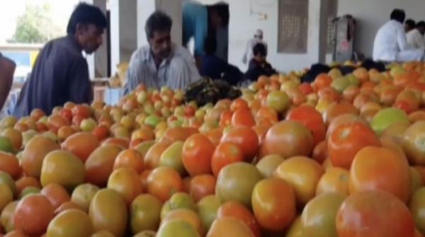Tomatoes to be imported from Iran to cut down prices