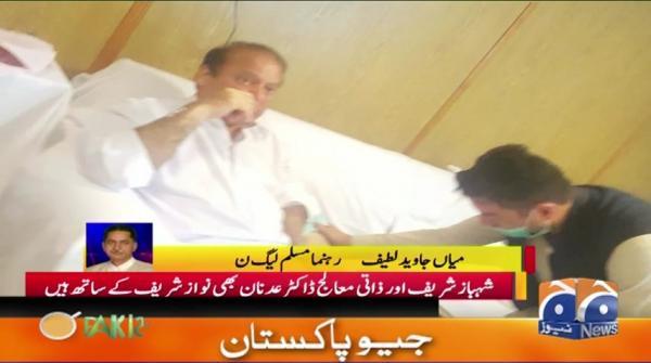 Shehbaz sharif aur Dr Adnan bhi Nawaz Sharif ke Sath hain,Mian Javed Latif 19-November-2019