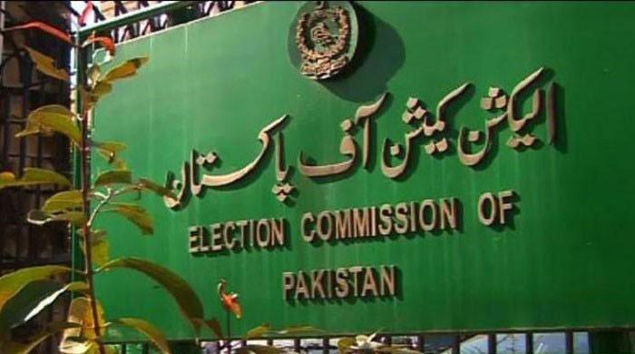 Foreign funding case: ECP kicks off investigation into PPP, PML-N