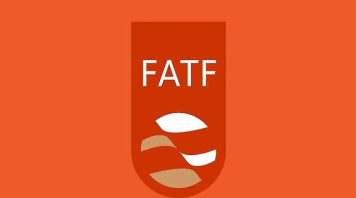Pakistan submits report comprising answers to FATF's remaining 22 action plans