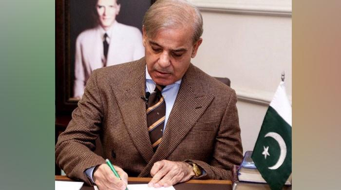 Did Shehbaz Sharif employ money launderers at the CM Punjab office?